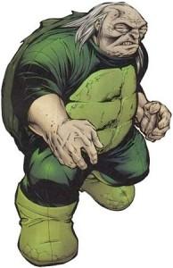Turtle_(DC)