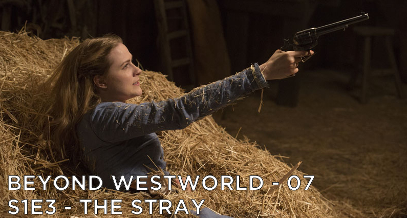 BW07 – The Stray – Westworld S1E3