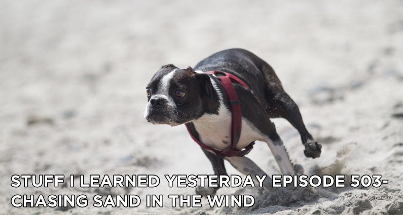SILY Episode 503- Chasing Sand in the Wind