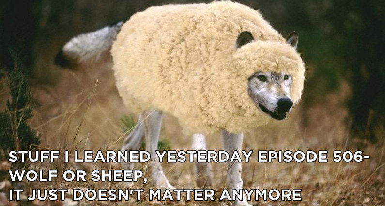 SILY Episode 506 – Wolf or Sheep, It Just Doesn't Matter Anymore