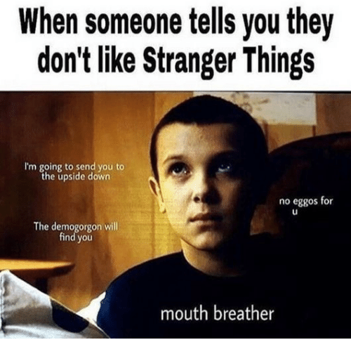 when-someone-tells-you-they-dont-like-stranger-things-im-28264702