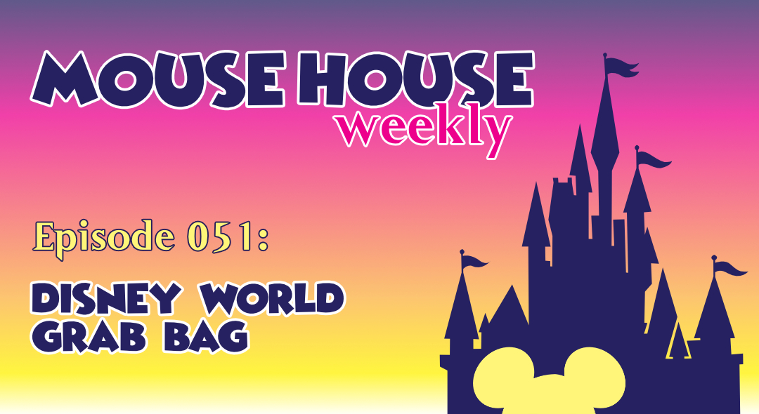 Disney World Grab Bag
