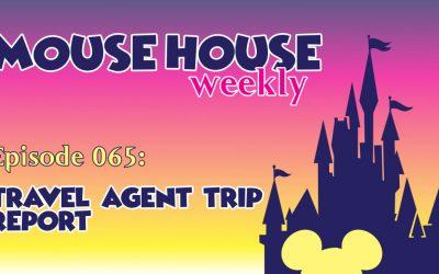 Travel Agent Trip Report